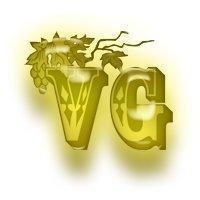 логотип клуба VG